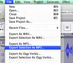 Eine Auswahl als MP3 exportieren